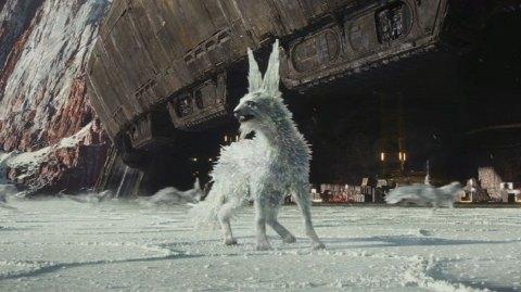 Les renards de cristal dans Les Derniers Jedi